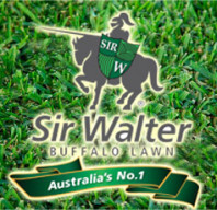 Synthetic Grass Campbellfield