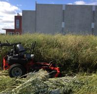 Landscaping Essendon